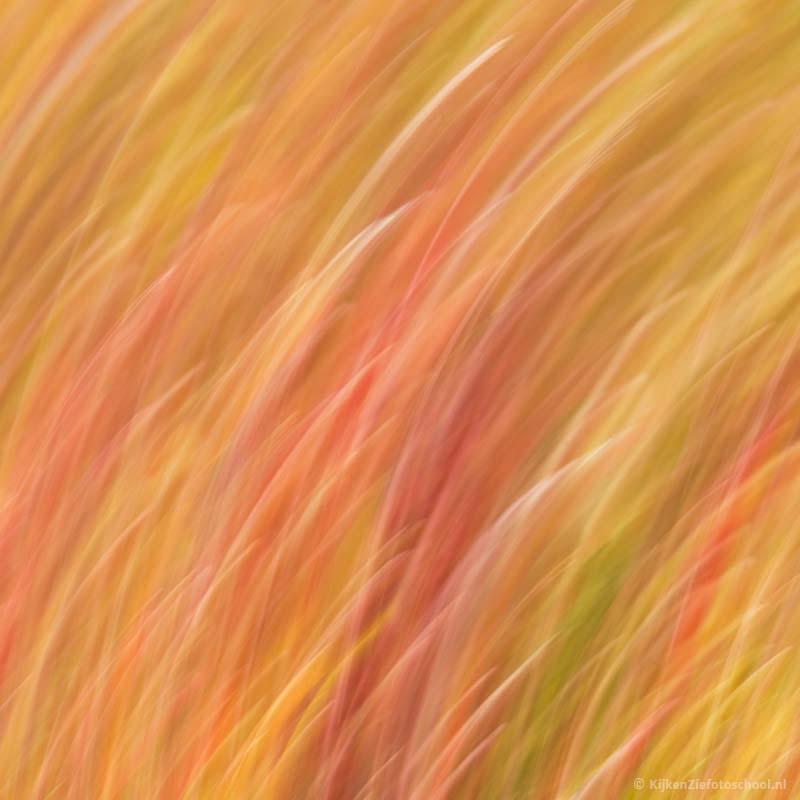 Abstracte fotografie
